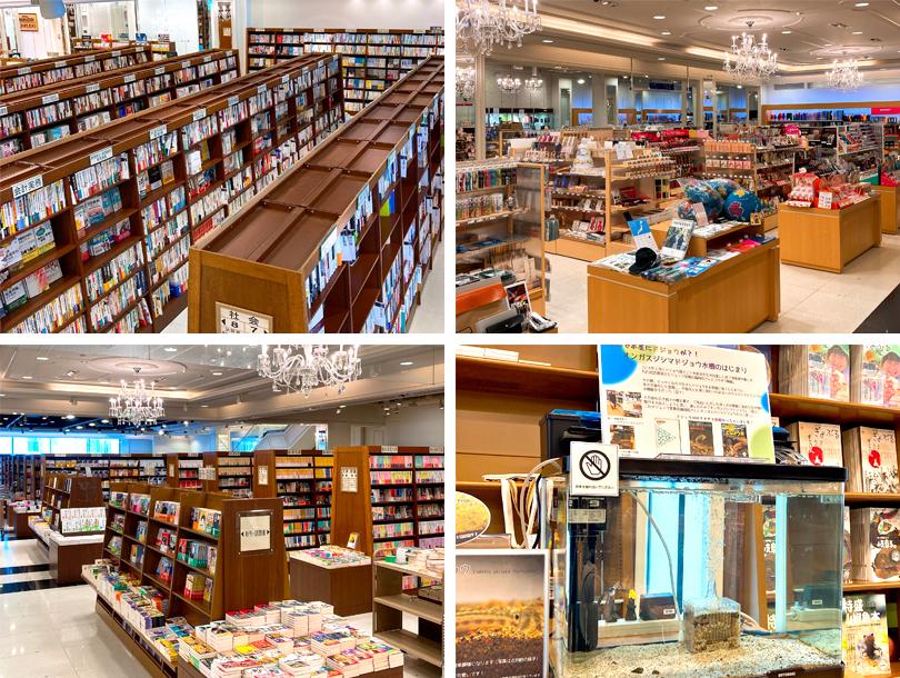 ジュンク堂書店福岡店店